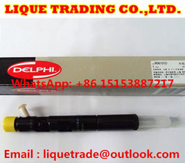 China DELPHI Genuine and New Common rail injector EJBR06101D for YUCHAI 2.5 4F FB3001112100011 supplier