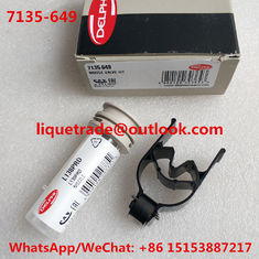 China DELPHI Repair kits 7135-649 (include nozzle L138PRD/L138PBD + valve 9308-621C/28538389 ) Overhaul kits 7135649 supplier