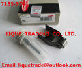 China DELPHI nozzle repair kits 7135-574 , 7135574 for Greatwall Hover H6 28231014 company